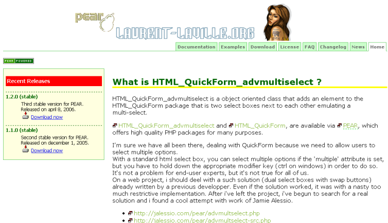 Site skin of year 2005